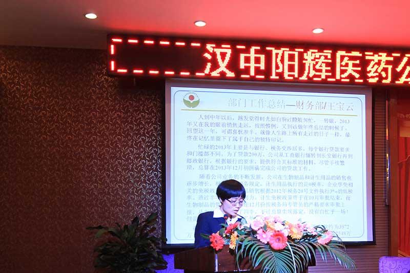 说明: 部门工作总结:财务部——王宝云